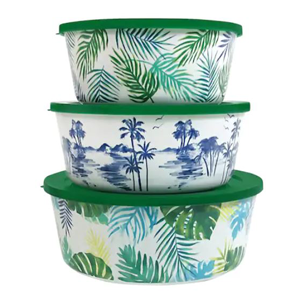 Palm Container Set