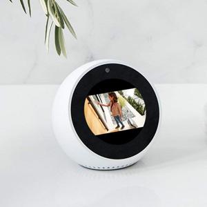 2x Echo Dot