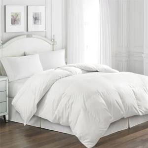 Feather & Down Comforter
