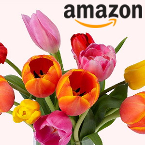 Amazon Mothers day
