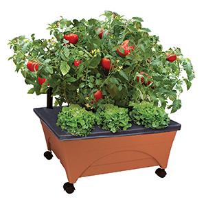 Garden Bed Kit